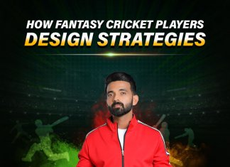 How Fantasy Cricket Players Design Strategies